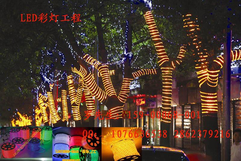 春节夜景工程彩灯,亮化景观led灯带,缠树灯带