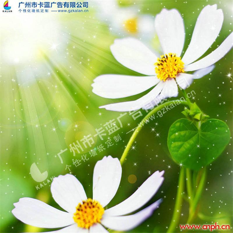 花朵清新田园墙纸